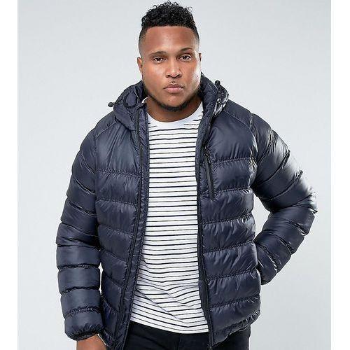 Bellfield plus lightweight padded jacket with hood - navy
