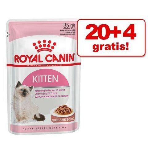 20 + 4 gratis! Royal Canin w sosie lub galarecie, 24 x 85 g - Intense Beauty w sosie, 1315 (1913658)