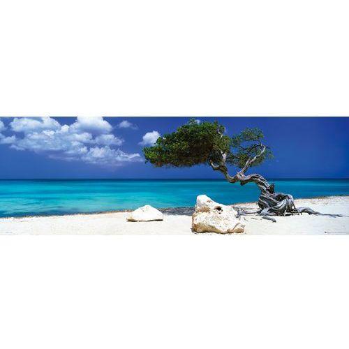 Gb Tom makie drzewko divi divi na plaży - karaiby - plakat