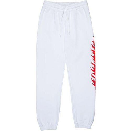 spodnie dresowe SANTA CRUZ - Flame Dot Sweatpant White (WHITE), kolor biały