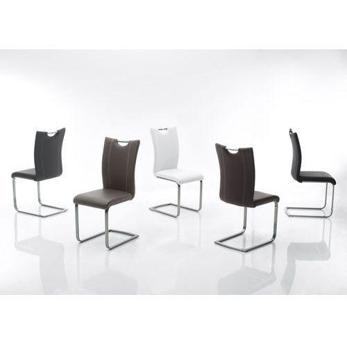 Krzesło PAWO na płozie, stal szlachetna szczot., pięć kolorów eko