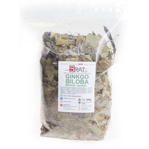 Ginkgo biloba - Miłorząb japoński - liście 250g – BRAT.pl (bakalie)