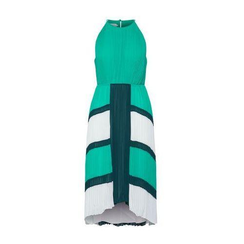 Ted Baker Sukienka koktajlowa 'Nellina' zielony / biały (5057930229143)