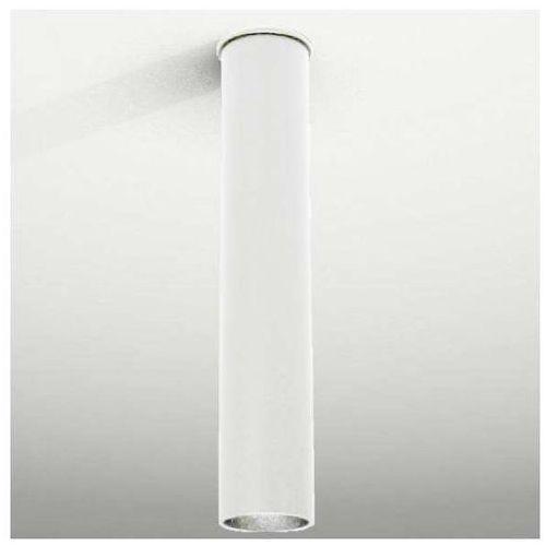 Shilo Downlight lampa sufitowa arida 1111/gu10/bi natynkowa oprawa reflektorowa do łazienki biały