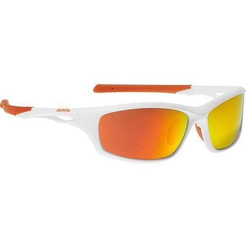 Okulary słoneczne senax p polarized a8577510 marki Alpina