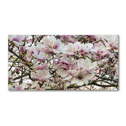 Fotoobraz na ścianę szklany Kwiaty magnolii
