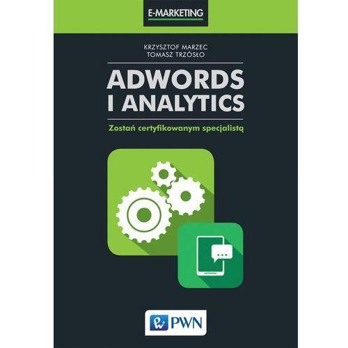 AdWords i Analytics - Dostawa 0 zł, Wydawnictwo Naukowe PWN