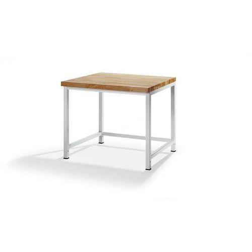 Stół warsztatowy, stabilny, 1 drążek poprzeczny, głęb. 900 mm, szer. 1000 mm. z marki Rau