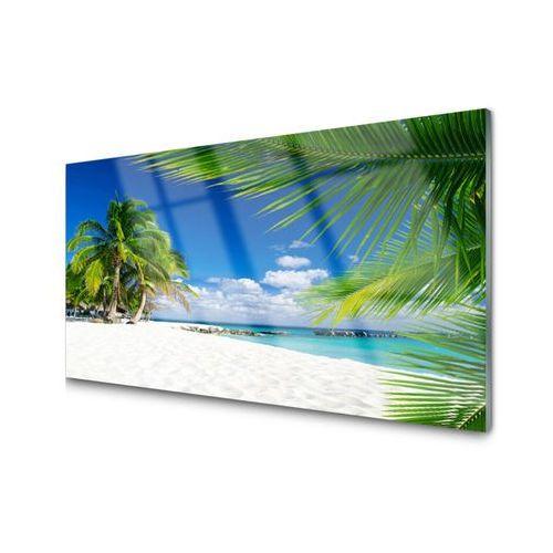 Obraz Akrylowy Tropikalna Plaża Morze Widok