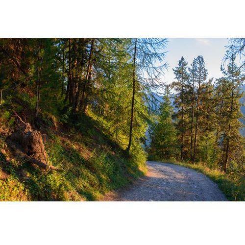 Fototapeta na ścianę zakręt na górskiej drodze fp 5333 marki Wally - piękno dekoracji