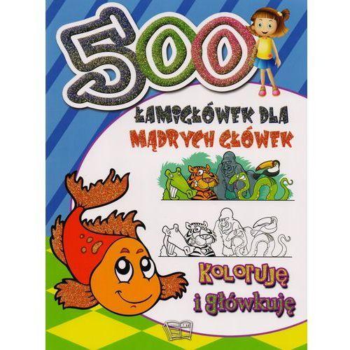 500 Łamigłówek dla mądrych główek Koloruję i główkuję (96 str.)