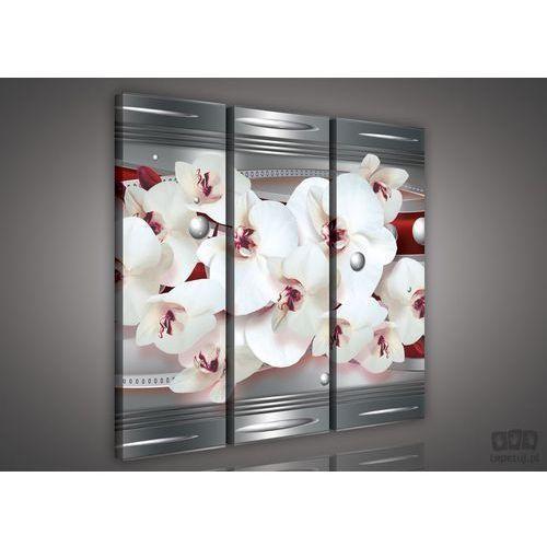 Obraz Białe Storczyki na fioletowym tle PS903S6, PS903S6