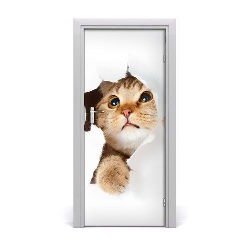 Naklejka samoprzylepna na drzwi ścianę Kot
