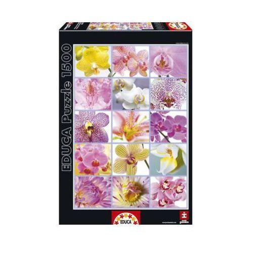 OKAZJA - 1500 EL. Kwiaty