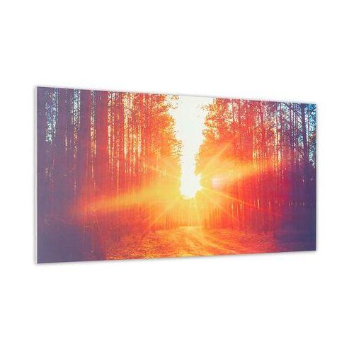 wonderwall air art infinite, grzejnik promiennikowy na podczerwień, obraz, 120 x 60 cm, 720 w, montaż ścienny, fb marki Klarstein