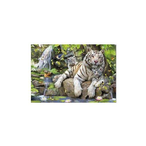 Puzzle 1000 elementów, Tygrysy Bengalskie - DARMOWA DOSTAWA OD 199 ZŁ!!!, 1_510848