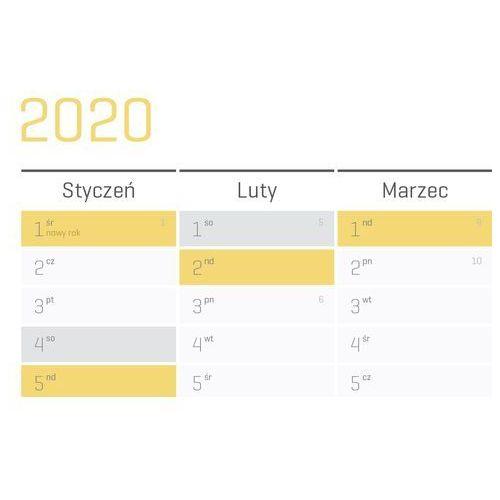 Planer na ścianę 2020 papierowy suchościeralny 84x59 A1