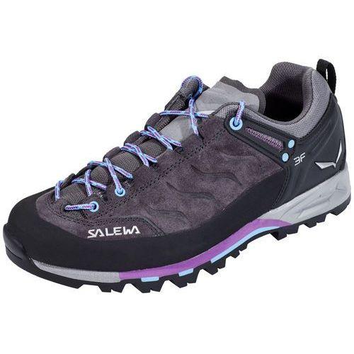Salewa mtn trainer buty wspinaczkowe magnet/haze