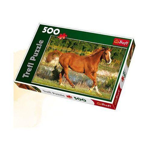 Piękno galopu Puzzle 500