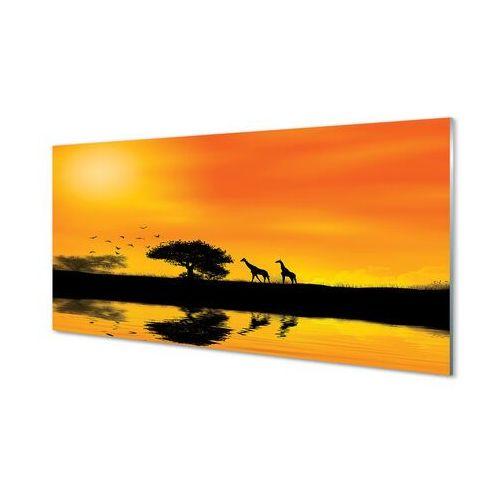 Obrazy akrylowe Żyrafy zachód drzewo jezioro