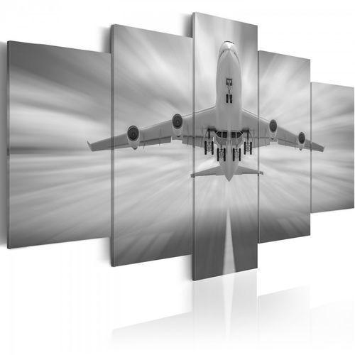 Obraz - samolot (100x50 cm) marki Artgeist