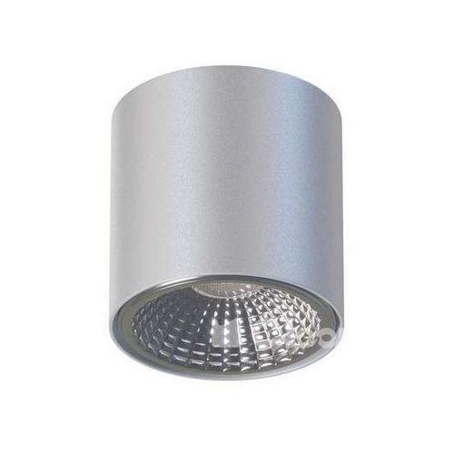 Cleoni Spot lampa sufitowa tito t113d1+kolor natynkowa oprawa downlight tuba