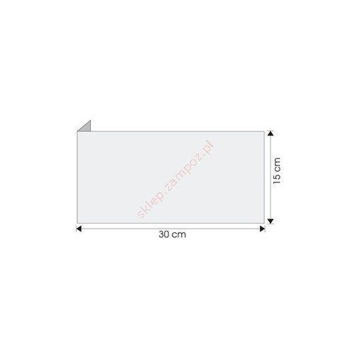 Techem Wysięgnik do znaków ewakuacyjnych ścienny 300x150mm