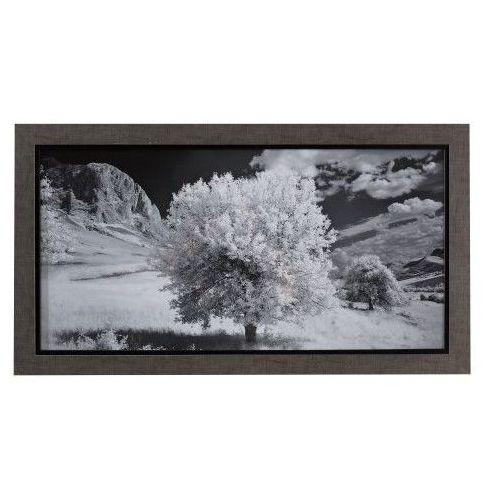 Dekoria Obraz Tree II 70x35, 70 × 35