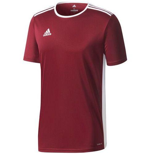 Koszulka dla dzieci adidas Entrada 18 Jersey JUNIOR bordowa CD8430/CE9564, kolor czerwony