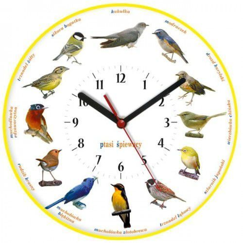 Atrix Zegar ścienny obrazki /ptaszki
