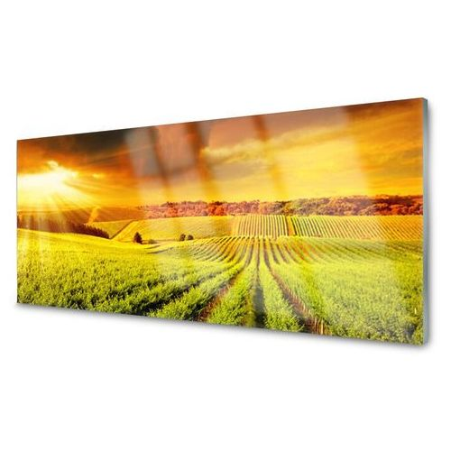 Tulup.pl Panel kuchenny pole zachód słońca krajobraz
