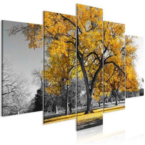 Obraz - jesień w parku (5-częściowy) szeroki złoty marki Artgeist