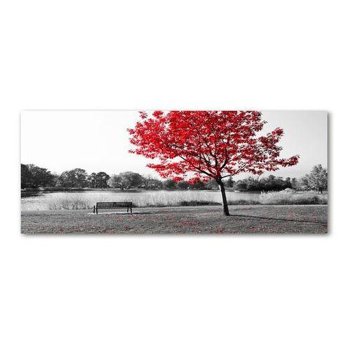 Foto obraz szkło akryl Czerwone drzewo