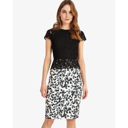 Phase Eight Fantasia Lace Dress (5057122052047)