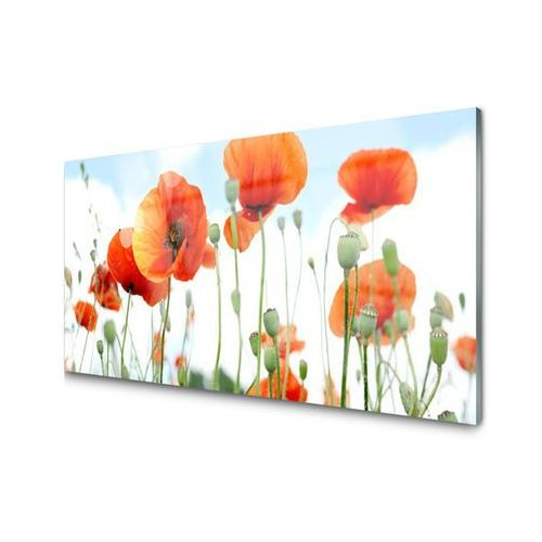 Obraz akrylowy kwiaty maki łąka pole natura marki Tulup.pl