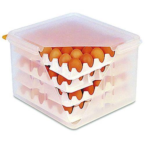 Tomgast Pojemnik na jajka z 8 tackami   , t-8023