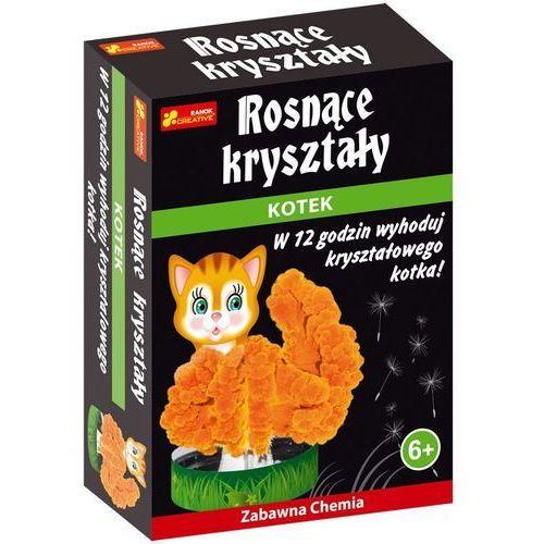 Rosnące kryształy - kryształowy kotek - Ranok-Creative (4823076121754)