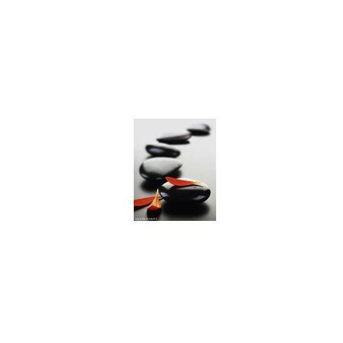 Zen stones i spa - red - plakat marki Galeria