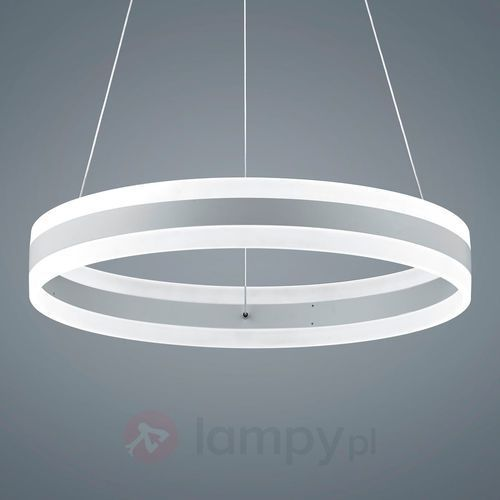 Helestra Liv Lampa wisząca LED Siwy, Biały, 2-punktowe - Nowoczesny - Obszar wewnętrzny - Liv - Czas dostawy: od 4-8 dni roboczych