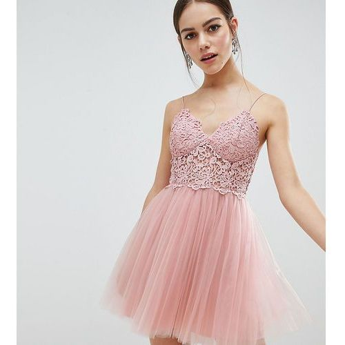 Asos petite Asos design petite premium lace cami top tulle mini dress - pink