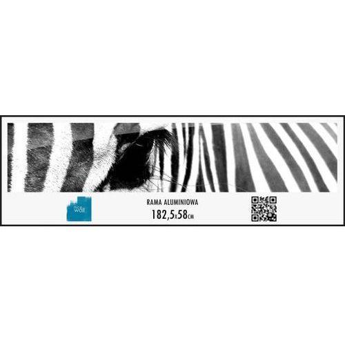 Rama aluminiowa 58x182,5 cm wyprodukowany przez Brak