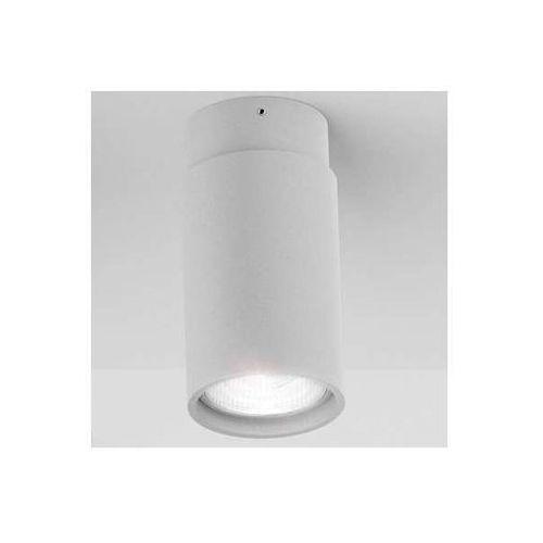 Redlux Downlight lampa sufitowa ex r10163  oprawa tuba plafon srebrnoszary (1000000114102)