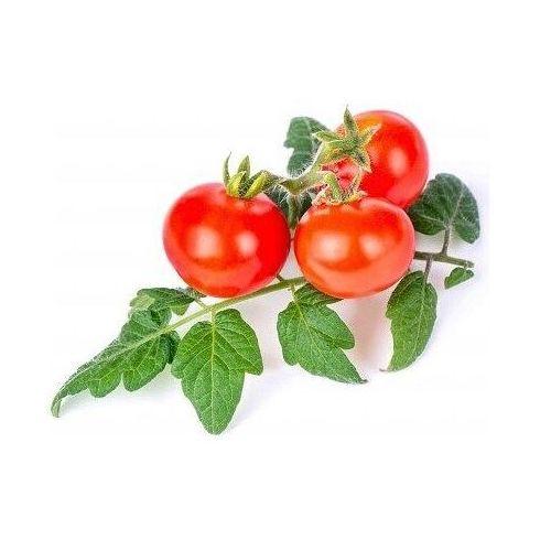 Véritable - mini warzywa - wkład nasienny - pomidor koktajlowy (do doniczek autonomicznych)