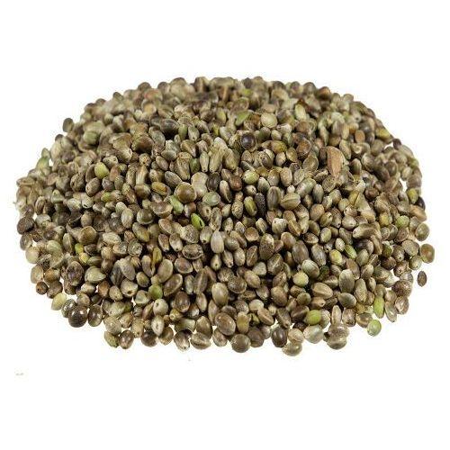 Nasiona konopi ziarno 5 kg