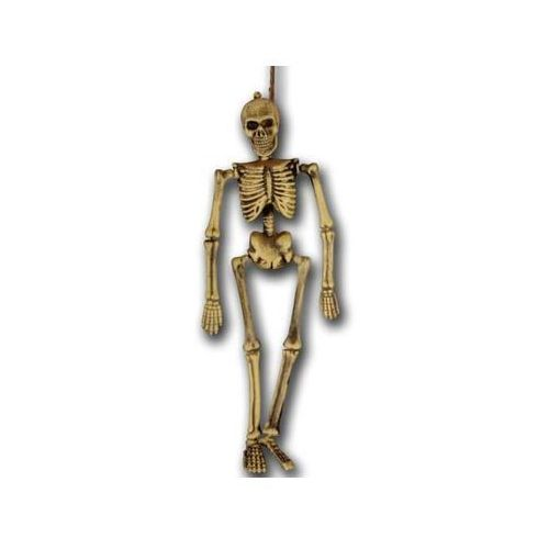 Carnival Wiszący szkielet - 40 cm (8004761063177)