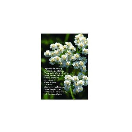Widokówka - Bądźcie jak kwiaty... - produkt z kategorii- Dewocjonalia