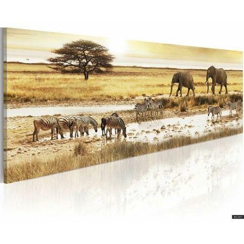 Selsey obraz - afryka: przy wodopoju 120x40 cm (5903025014715)