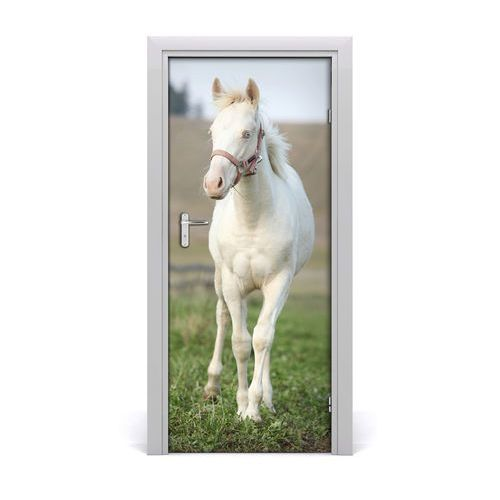 Naklejka samoprzylepna na drzwi ścianę Koń albinos