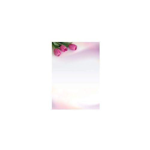 Galeria papieru Arkusze barwne fanfan 100g 50 szt new