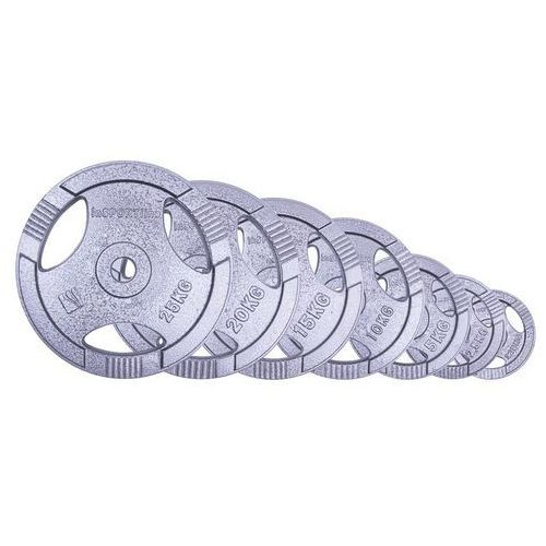 Insportline Obciążenie stalowe hamerton 2,5 kg